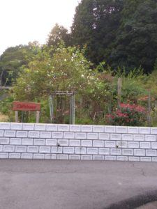 茨城オープンガーデン