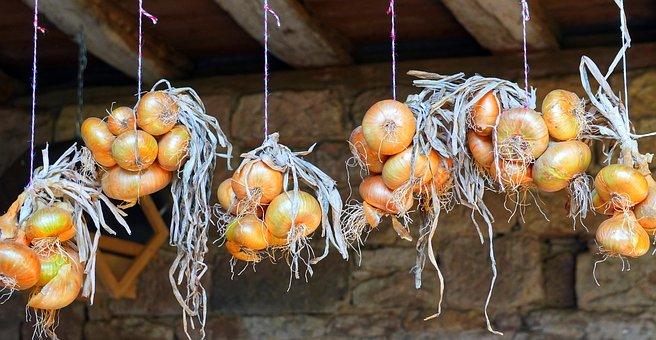 玉ねぎ保存方法